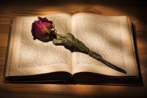 Kaj vam pomeni poezija?